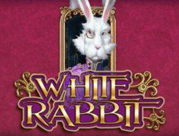 tragaperras white rabbit big time gaming