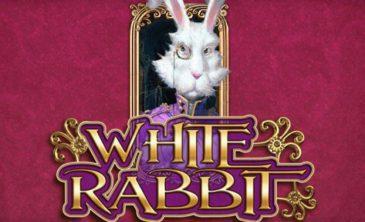 tragaperras white rabbit big time gaming